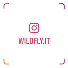 wildfly.it su instagram